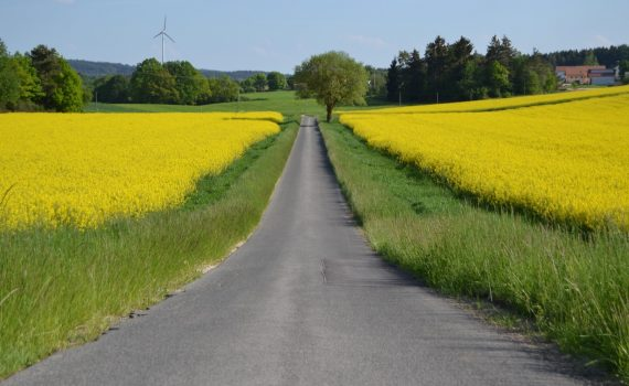 Germany In the Spring