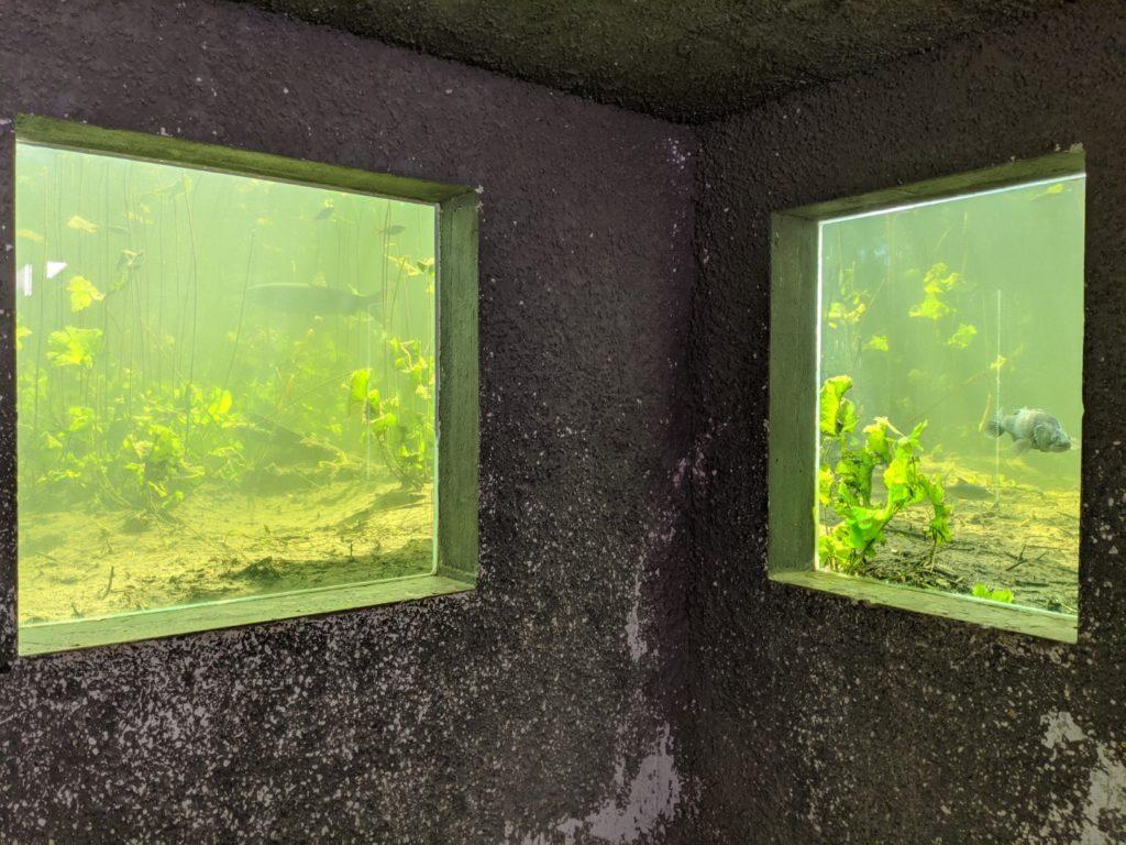 Wildgarten Underwater Observation Station