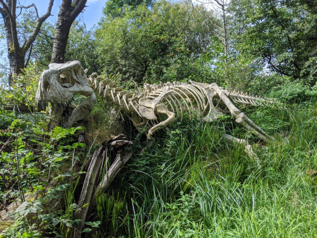 Wildgarten T-rex