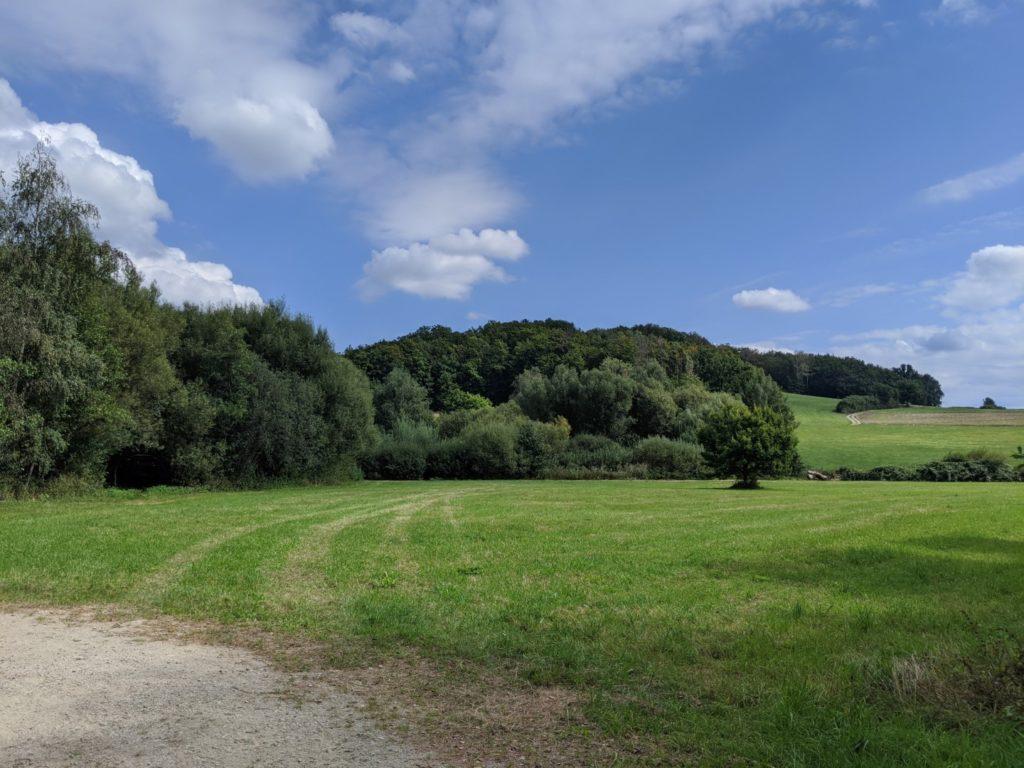 Bavarian Forest Cham