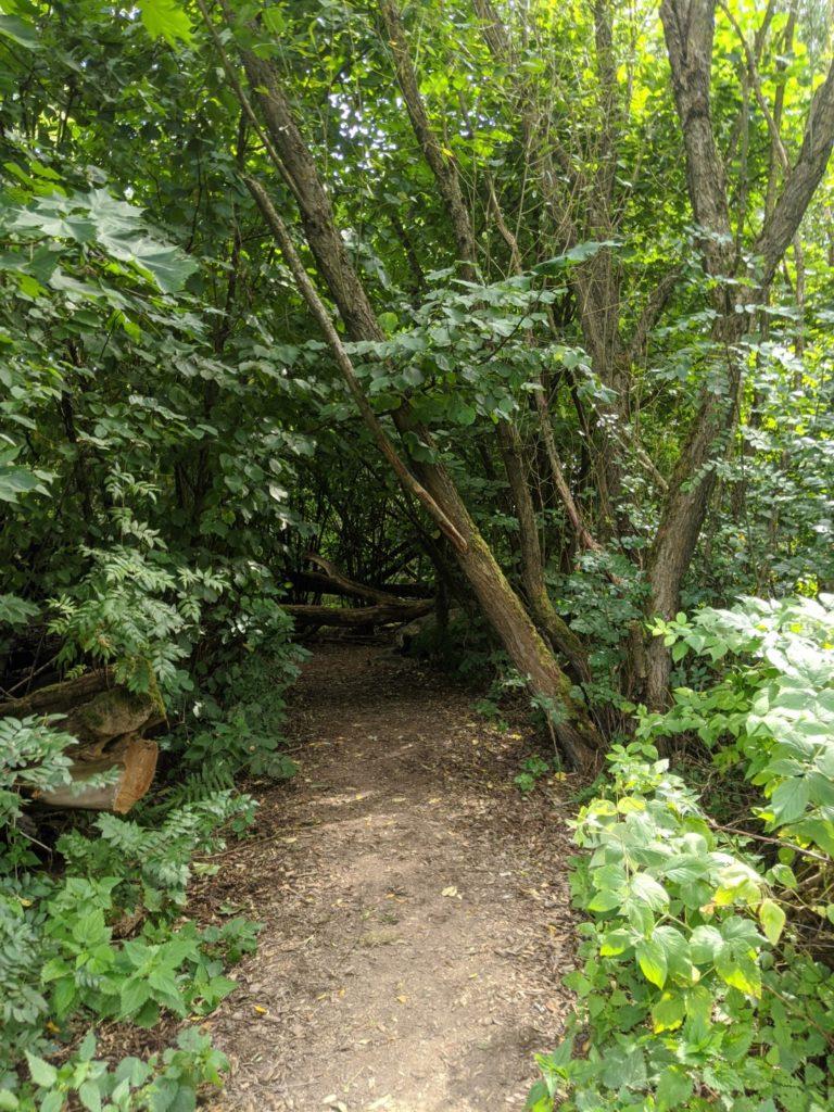 Bavarian Forest Wildgarten