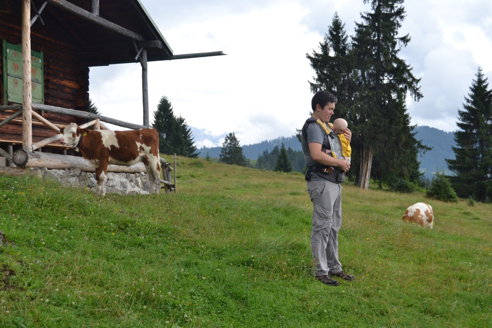easy hiking in germany for a family